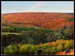Colors Of My Autumn