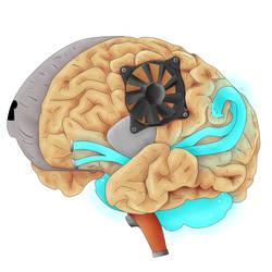 Artificial Brain by Aliazanetsu