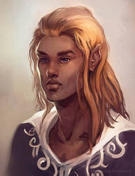 Half Elf by samanthajoanneart