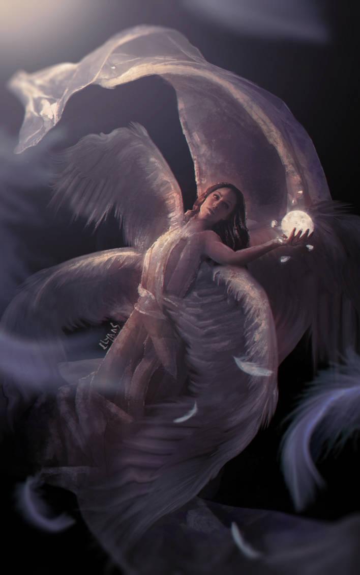 feathers by llyaas