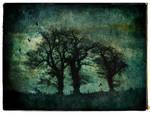 Three Trees Textured by struckdumb