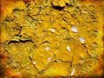 Yellow Dream by struckdumb