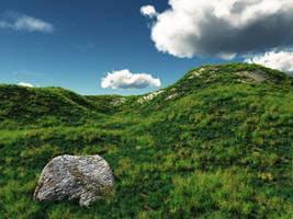 Grassy Hillside. by struckdumb