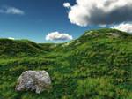 Grassy Hillside.
