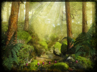 Sunlit Forest by struckdumb