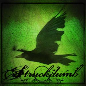 struckdumb's Profile Picture