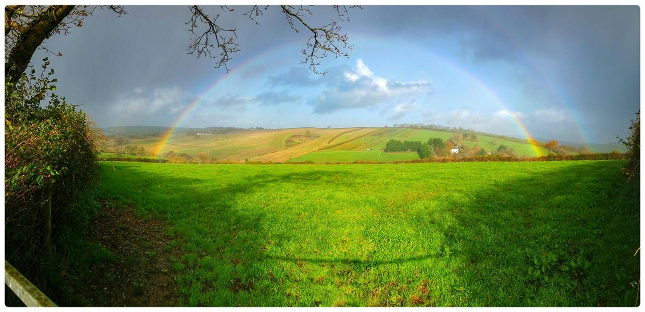 Rainbow by struckdumb