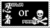 Ninja or Pirate? by Wind-Up-Doll