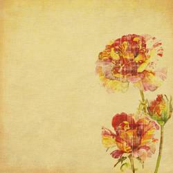 Watercolor Dreams Number5