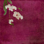 Orchidarium 1 by inkblotfairy