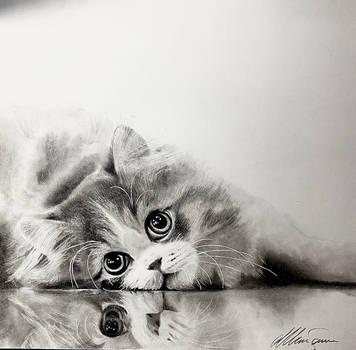 Kittycat drawing by MitchSanna