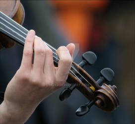 The  Violin  Paris MjYj