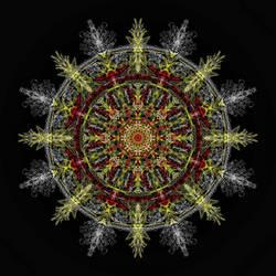 Native Pride Mandala
