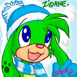 NP: Just Zidane the Zafara