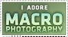 I Adore Macro Photography