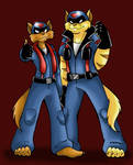 The SWAT Kats :guitar riff: