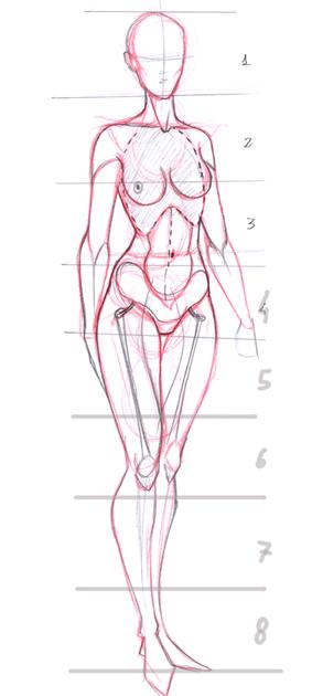 Very, very basic anatomy by Go-Dark on DeviantArt