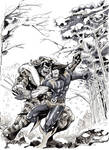 Wolverine VS Sabretooth