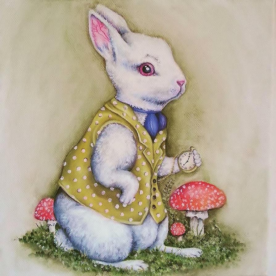 White Rabbit by callum8am