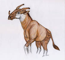 Giraffokeryx Colour by thylobscene