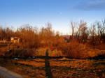 Dirt Landscape