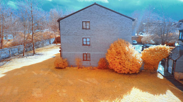 My house in infrared