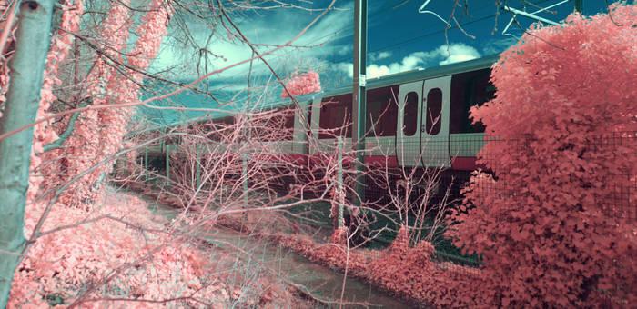 London Overground (infrared)