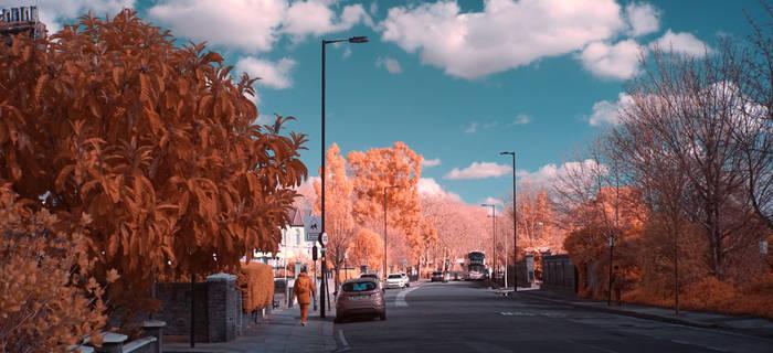 Sunny day in Infrared