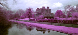 London - Clisold Park  (Infrared)