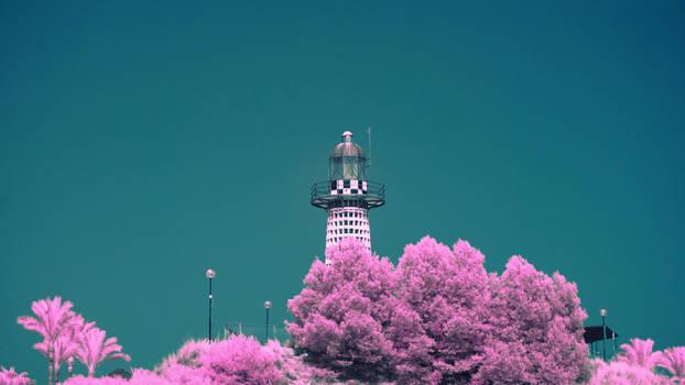 Malaga(Benalmadena) in Infrared