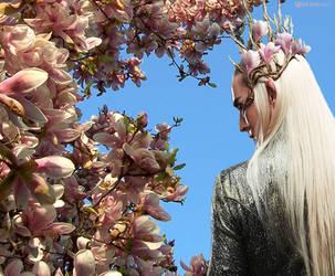 Spring King by Menkhar