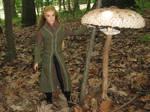 Legolas and the parasol mushroom by Menkhar