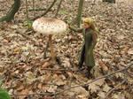 Legolas and the parasol mushroom 2 by Menkhar