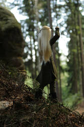 Thranduil is watching his Realm 3 by Menkhar