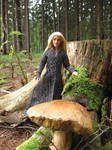 Mushrooming with elven king Thranduil by Menkhar