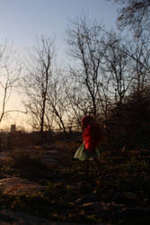 Little spring walking 2