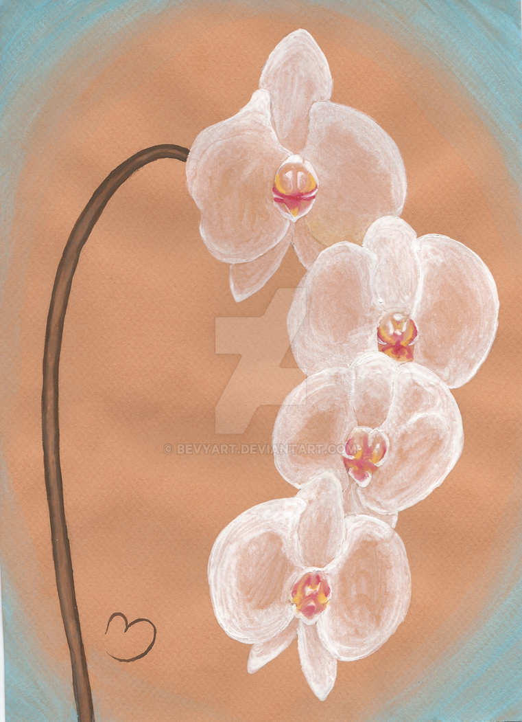 White Orchids by BevyArt