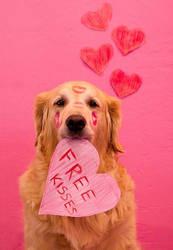 Happy Valentines! (Read desc)