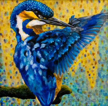 Preening Kingfisher by ShadedMoons