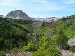 Zion National Park - Wildcat Canyon 1