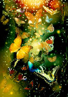 Butterflies by TretyakOVKa