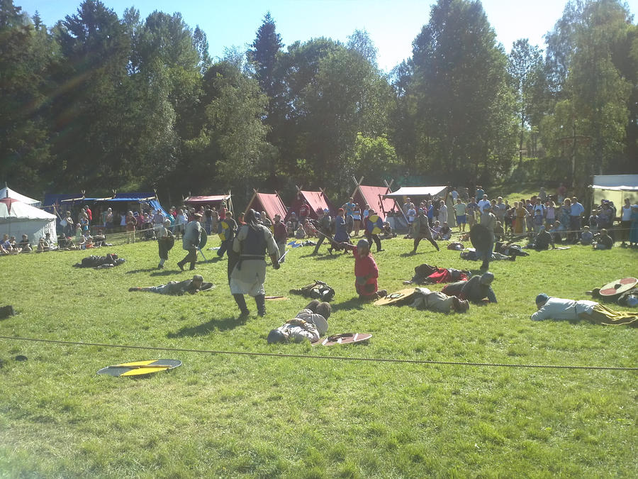 Viking battle by EgonEagle