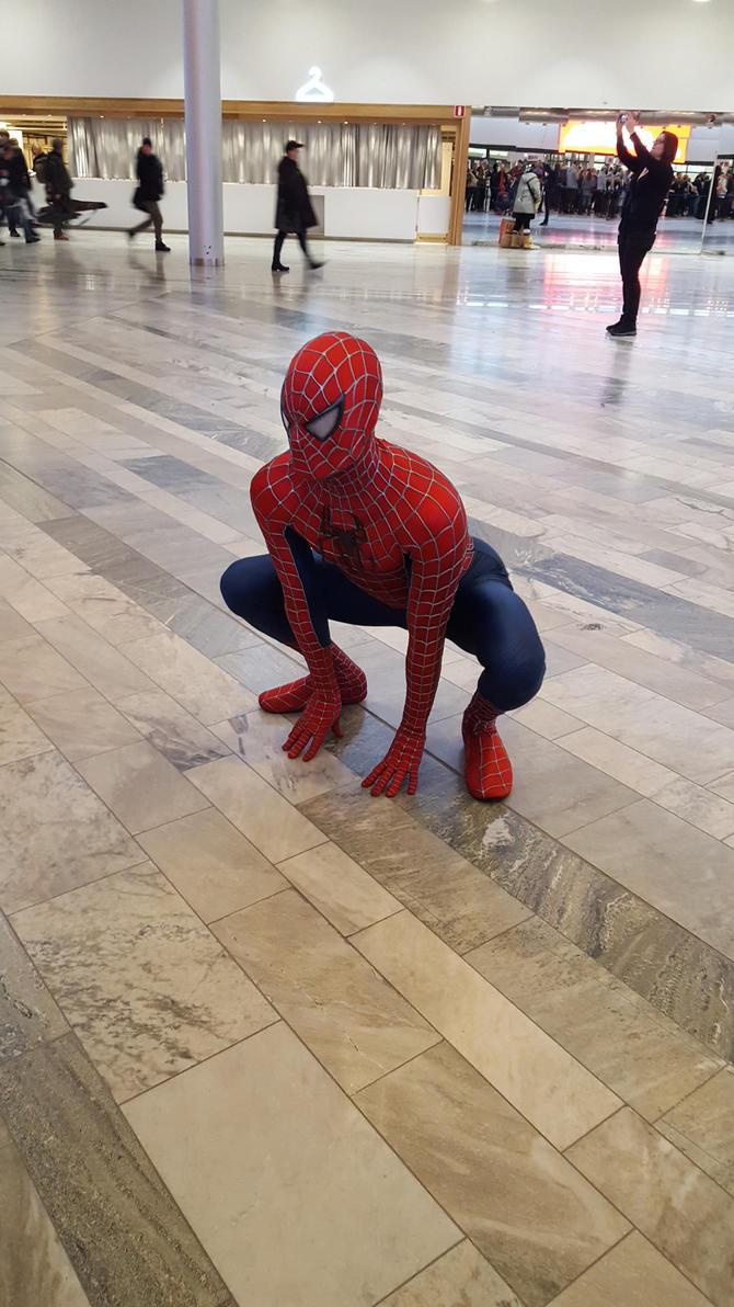Spider-Man by EgonEagle