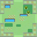 Meadow Environment