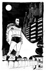 Batman and Gotham by pfab