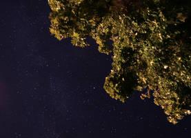 My Starry Night by Foxfires