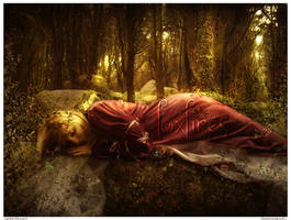 Sleeping Beauty by Foxfires
