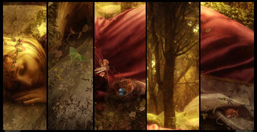 Sleeping Beauty - Details by Foxfires