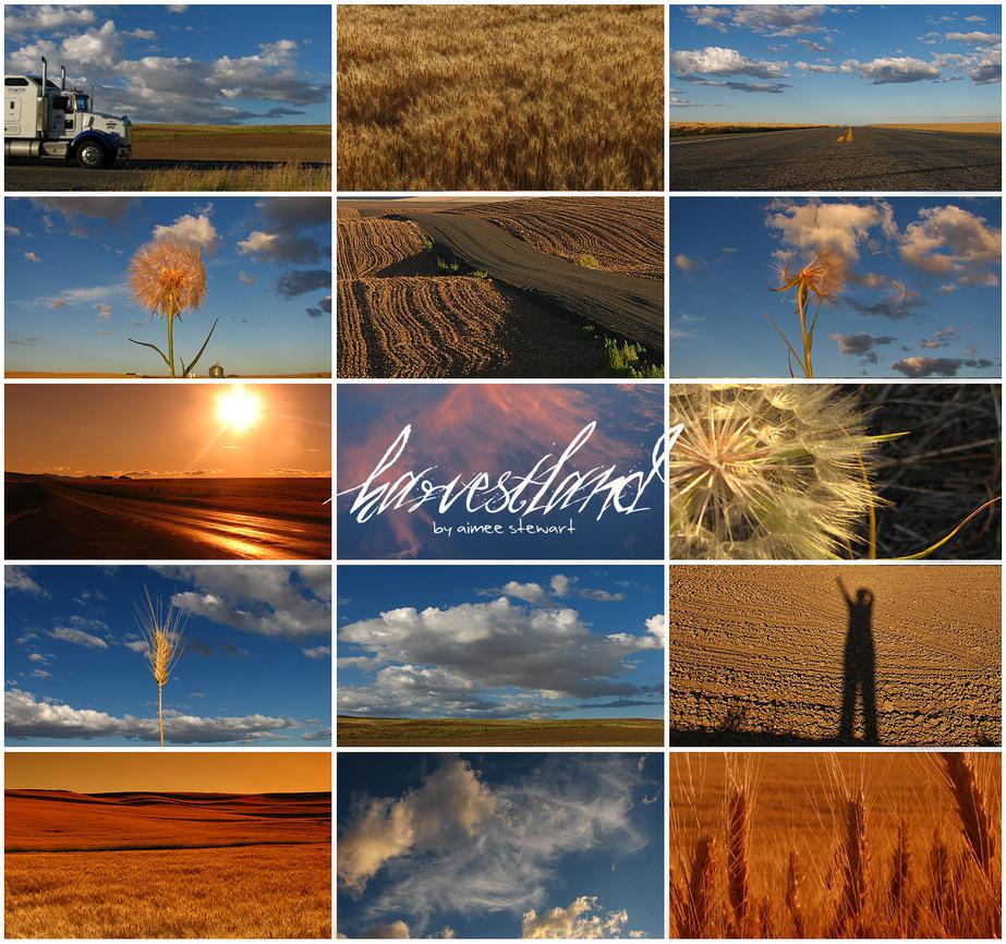 Harvestland by Foxfires