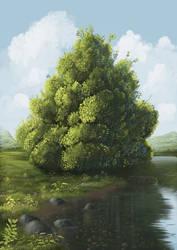 tree and vegetation study